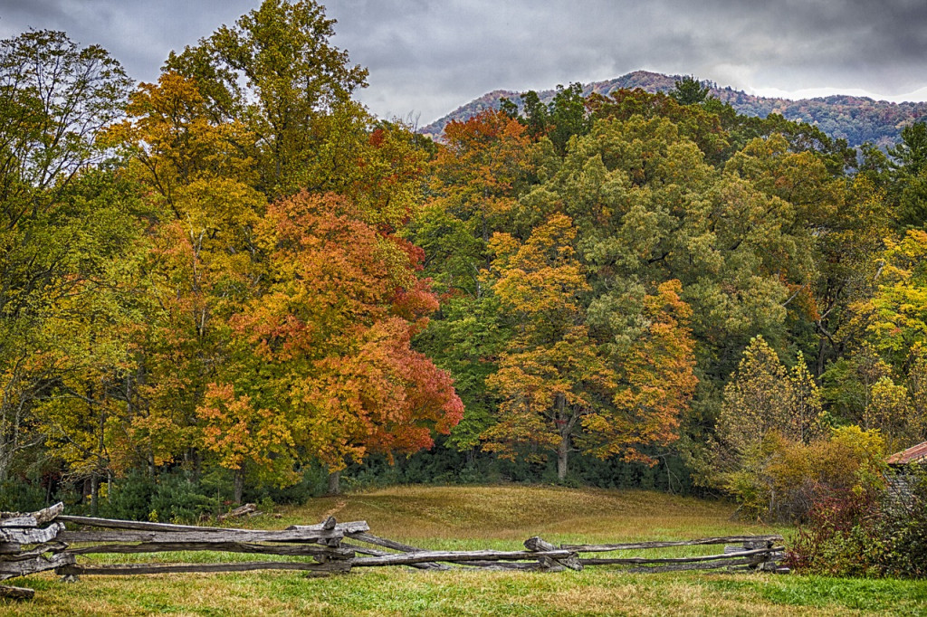 Great Smoky Mtns
